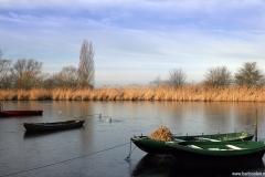 Brabant-Fotografie-Biesbosch