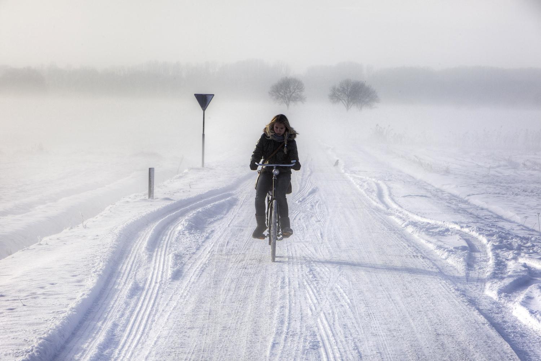 Den Bosch; eenzame fietser; kloosterstraat; polder; sneeuw; land