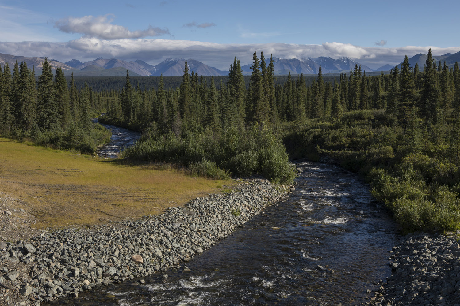 Alaska, denali, national park, state park, wilderness, nature, bart coolen, photography