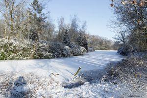 Berlicum-Wamberg-winter-bevroren-meer3.JPG