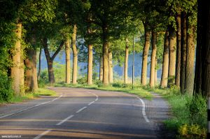 Berlicum-fotografie-zonsopgang-Loofaert.jpg