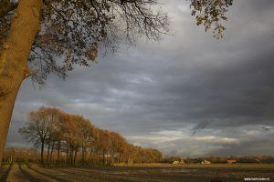 Berlicum-herfst-Veedijk-01.jpg