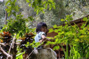 Indonesia-Bali-Munduk04.jpg