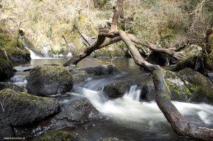 Ierland-Wicklow_0341.jpg