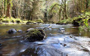 Ierland-Wicklow_0364.JPG
