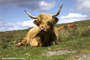 Schotland-Engeland-Groot-Britannie07.jpg