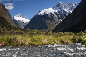 Nieuw-Zeeland-New-Zealand19.jpg