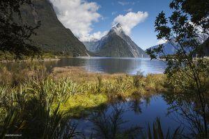 Nieuw-Zeeland-New-Zealand21.jpg