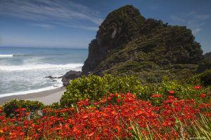 Nieuw-Zeeland-New-Zealand42.jpg